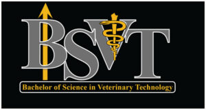 BVST Official Graphic